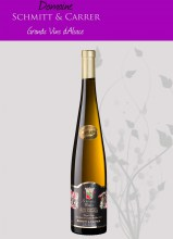 pinot-gris-sgn-2009